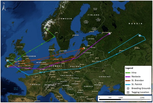 Map 1: Migration tracks to end of Sept 2014