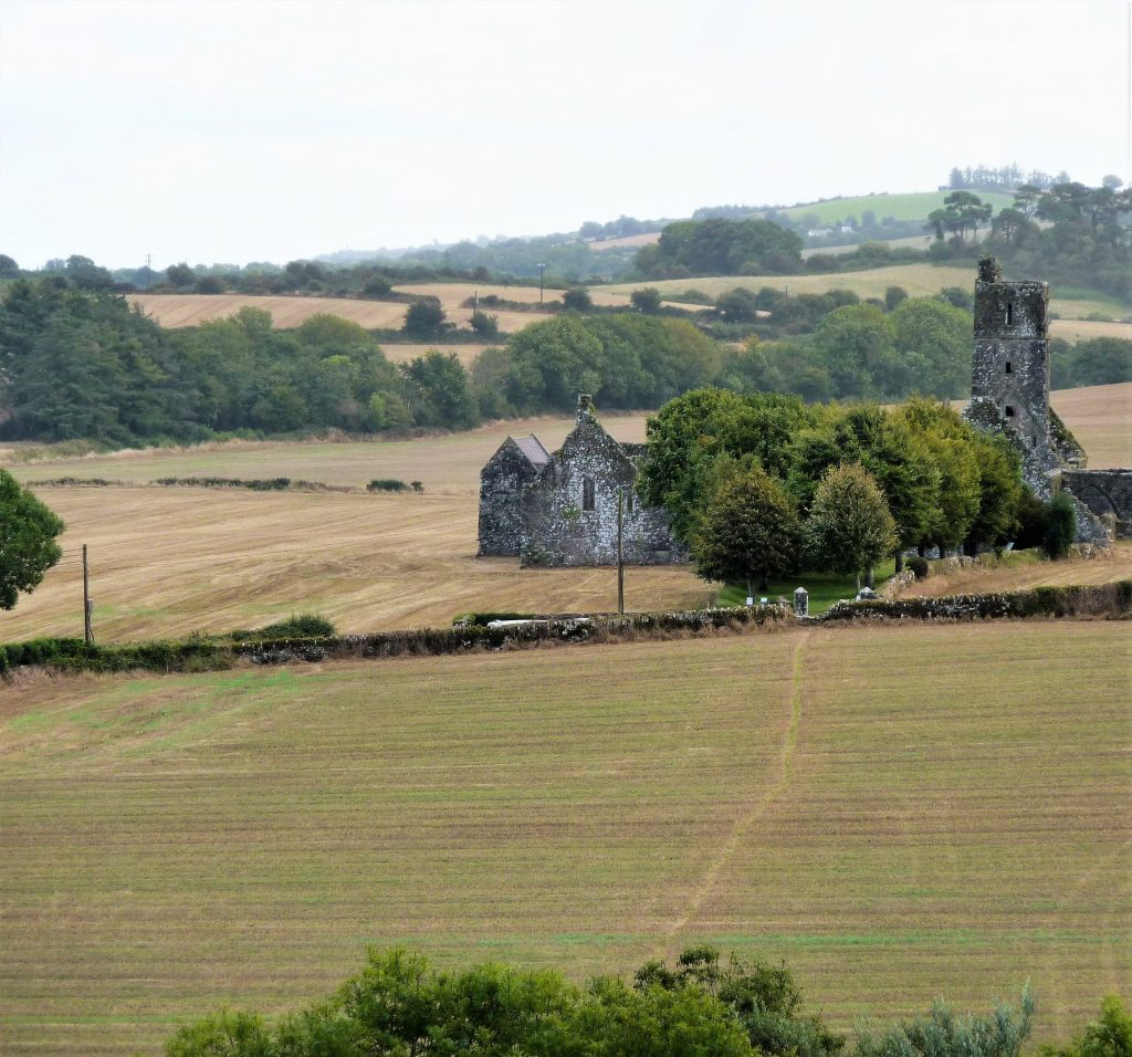 Photo of the ruined Kilcrea Franciscan friary in Co Cork. The friary is surrounded by trees and fields.